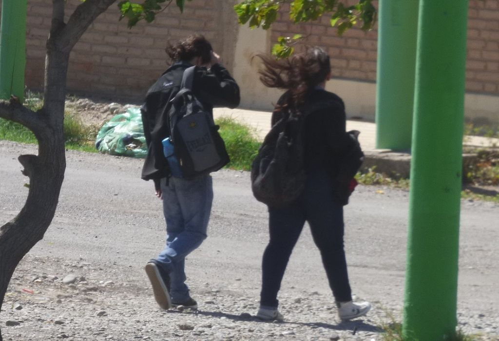 Continúan las heladas parciales y vientos intensos en Mendoza