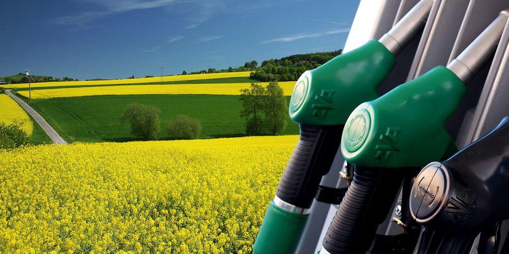 Continuará investigación por dumping contra biodiésel argentino en los Estados Unidos