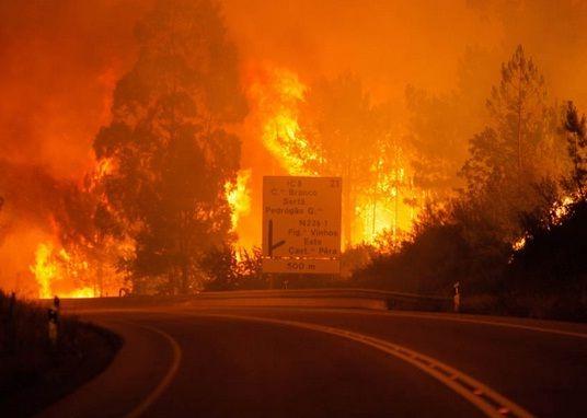 Incendio forestal en Portugal deja al menos 62 muertos