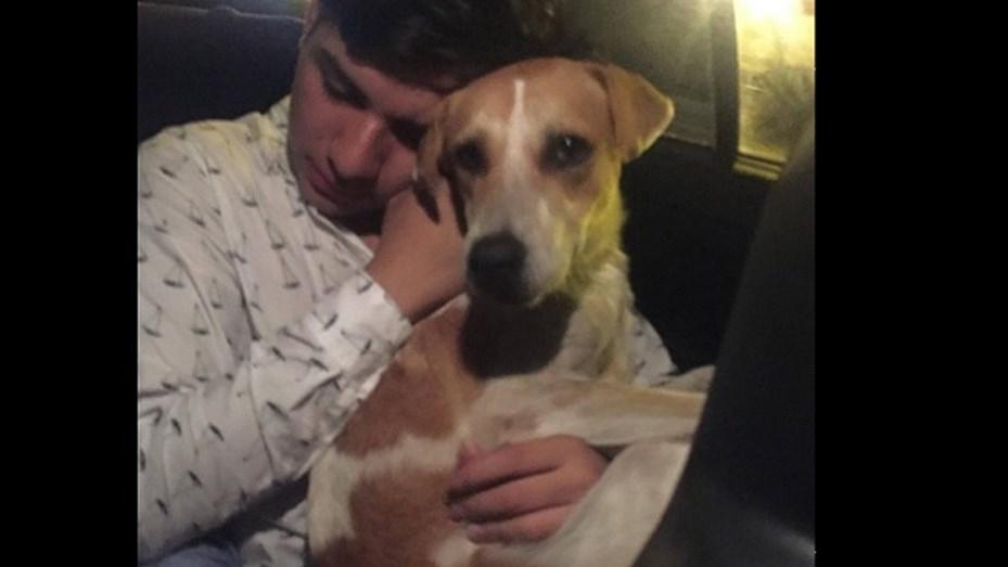Joven adopta perro al salir del antro