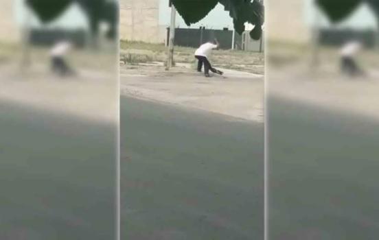 Mató a palazos a un perro y terminó detenido — Indignante video
