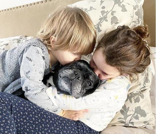 El dolor de Pedro Alfonso por la muerte de su perra Renata