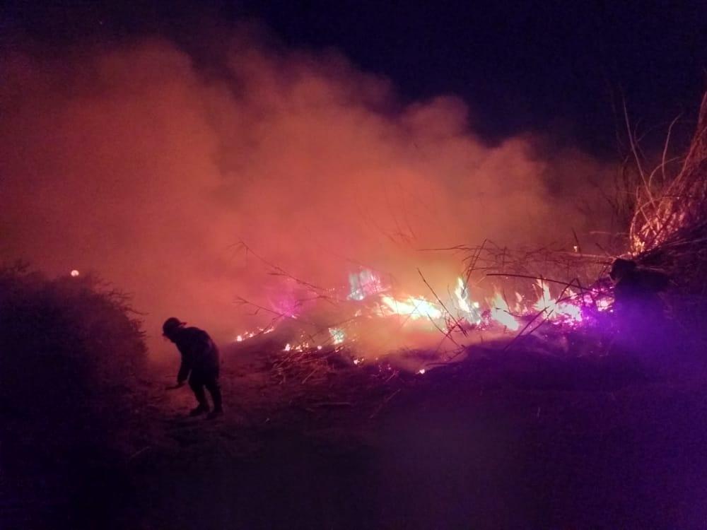 Encontraron muerto a un nene abrazado a su perro en medio de un incendio