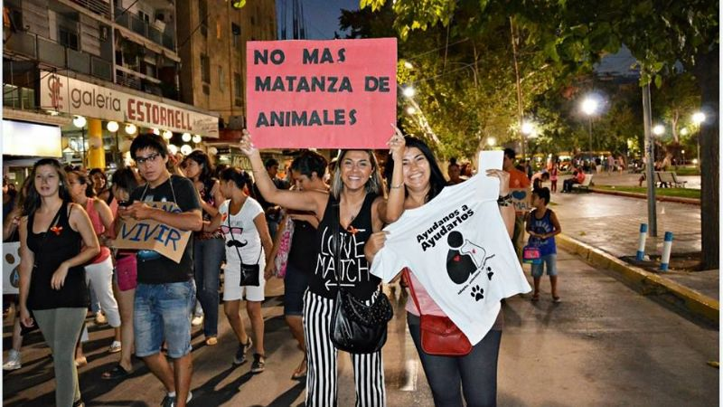 Exitosa convocatoria contra el Maltrato animal