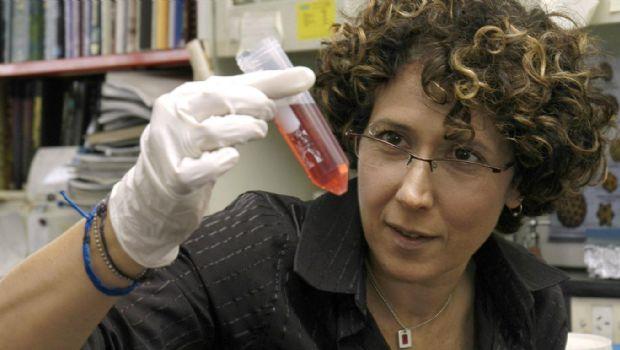 Una investigadora argentina fue premiada por la Unesco como la científica más destacada de América Latina