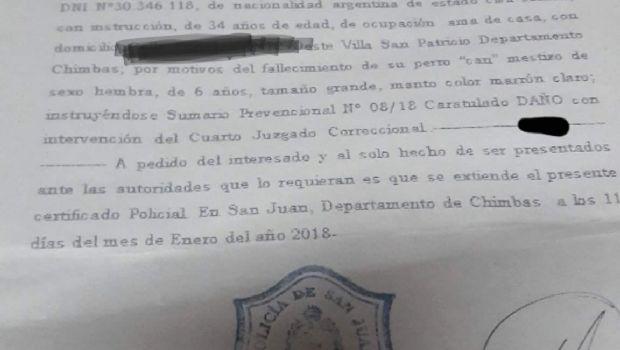 """Perros baleados en Chimbas: la causa está caratulada como """"daños"""""""