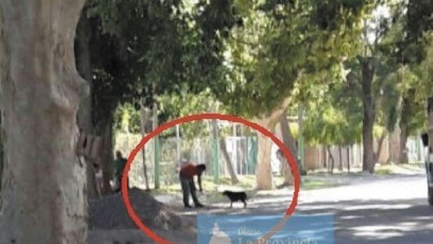 Camioneros se ganaron la confianza de un perro y luego lo ahorcaron