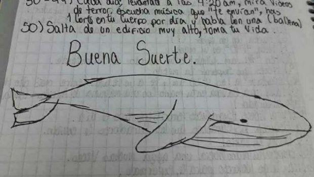 """Conmoción por la muerte de un nene: investigan si jugaba a """"la ballena azul"""""""