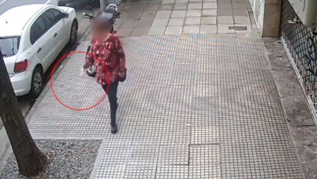 Cómo actuaba la mujer que envenenó y mató a 40 perros