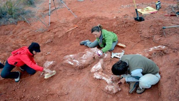 El potencial de Balde de Leyes tras el hallazgo del dinosaurio gigante más antiguo